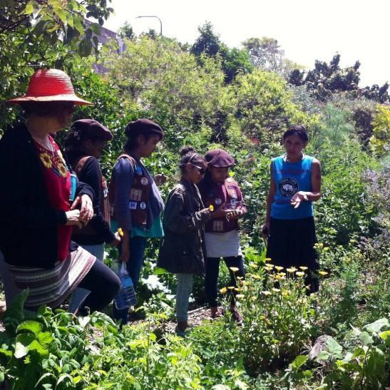 Herb walk for Radical Monarchs