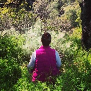 Plant meditation